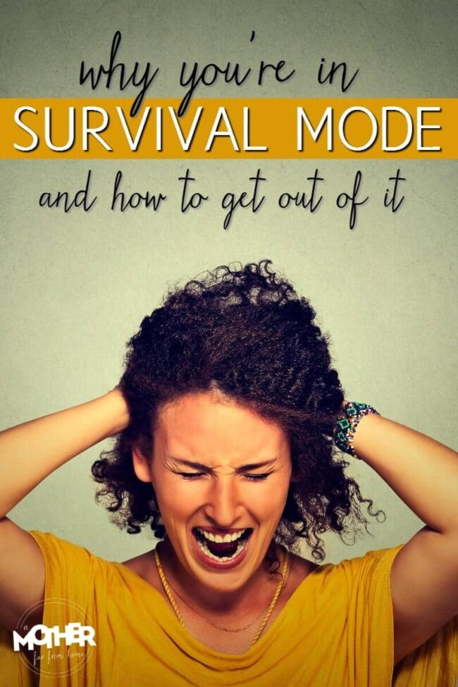 Mothers are often found in survival mode. Struggling to do the basics, much less the extras. This can cause a lot of stress for women, particularly moms of young ones, so here are some ways to cope. Great read for moms of toddlers and preschoolers.