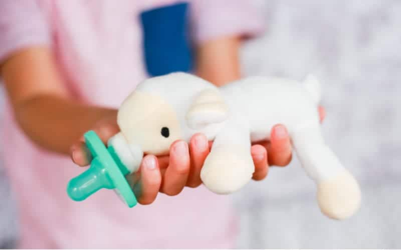 stuffed animal pacifier for babies or infants