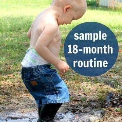An 18 Month Routine for Energetic Toddlers