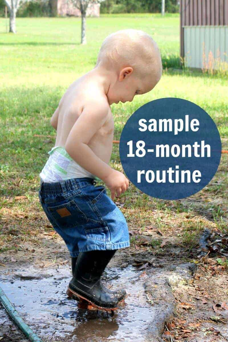 sample 18 month schedule or routine for toddlers