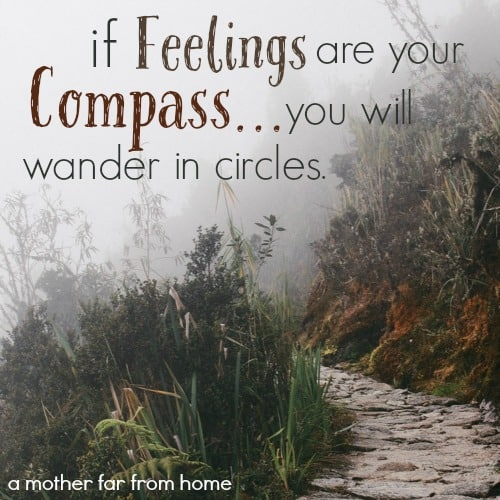 if feelings are your compass....you will wader in circles- a mother far from home