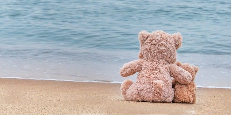 two teddy bears hugging and snuggling on the beach seashore
