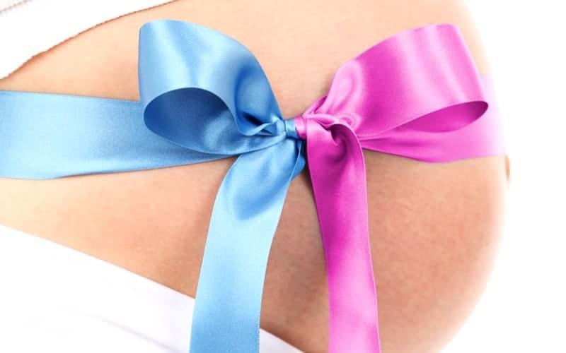 pink blue belly
