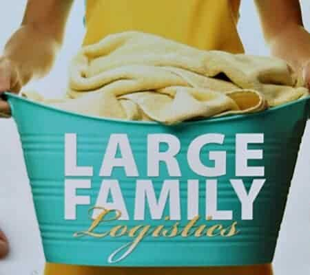 "An Honest Review of ""Large Family Logistics"""
