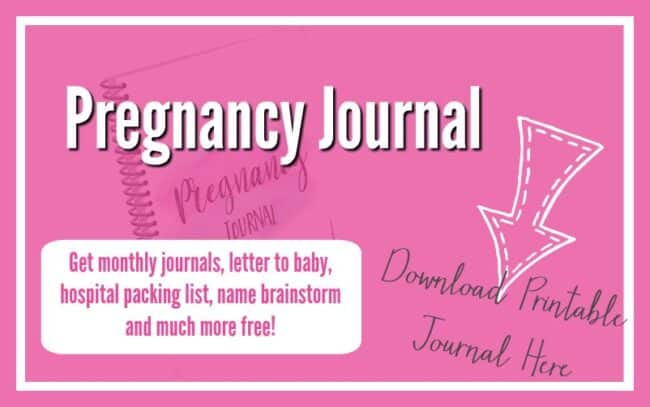 Pregnancy Labor and Postpartum Funnel Opt In With Free