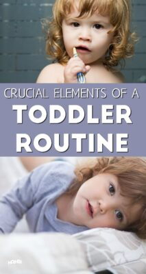 Here are some crucial elements of a toddler schedule and routine that will help you have peaceful days.