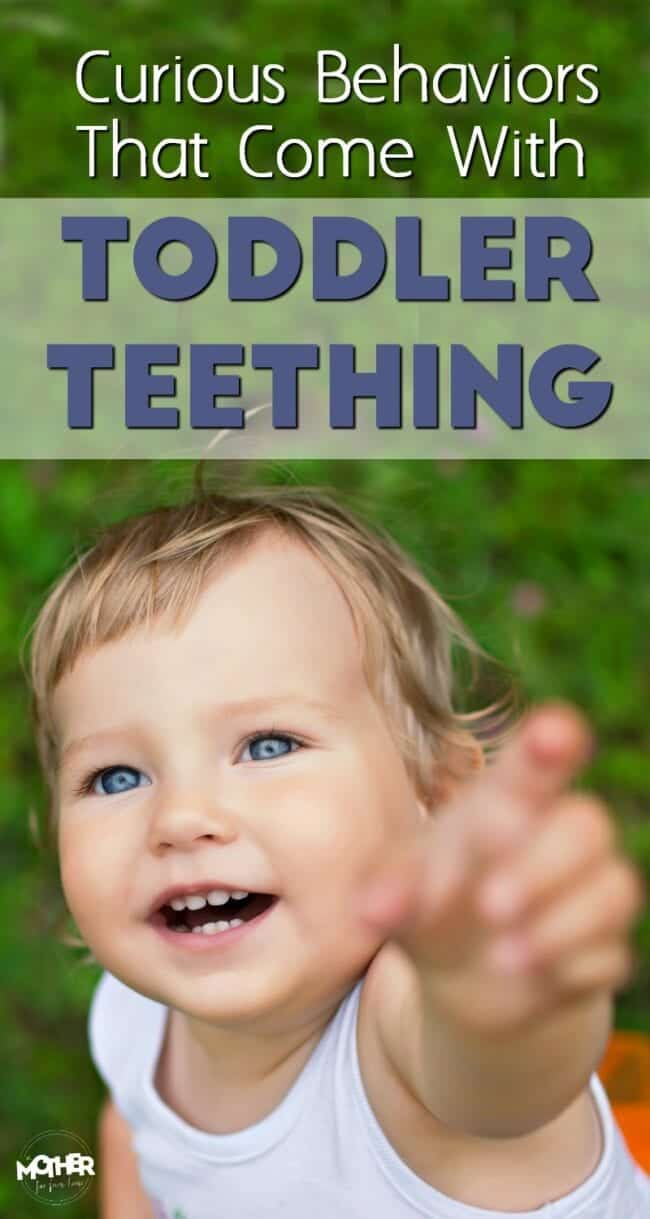 Got a toddler displaying some weird behavior? Here are some curious symptoms that come with toddler teething.