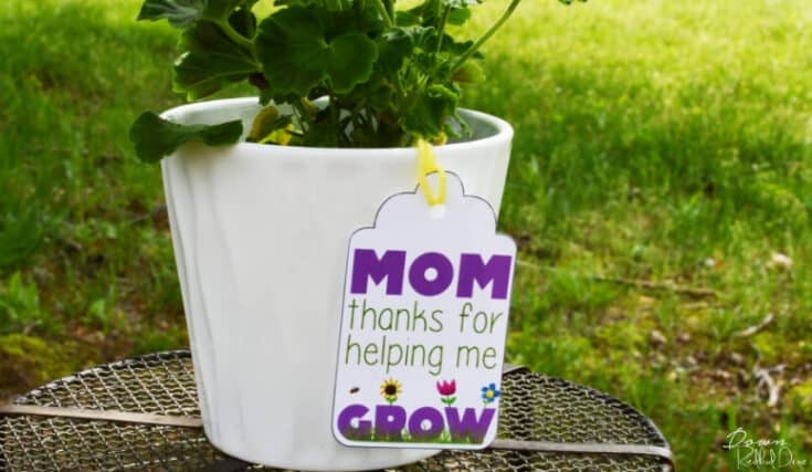 Mother's Day Flower Pot | Free Printable Tag