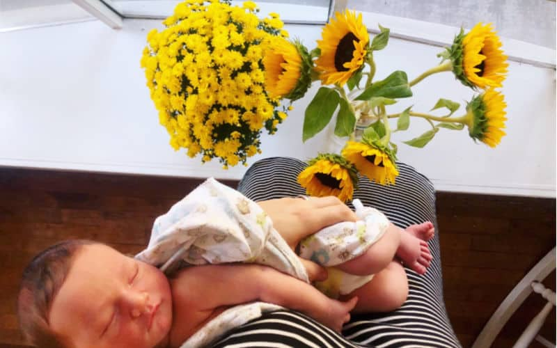 newborn sleeping in blanket in mothers arms during summer with sunflowers